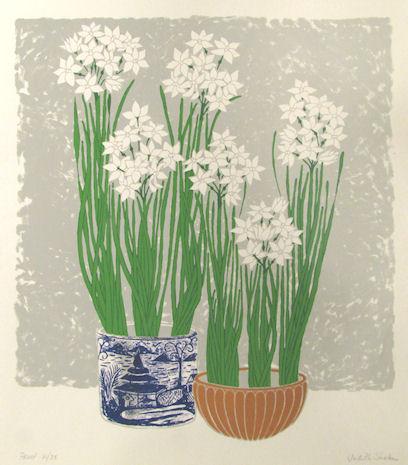 JUDITH SHAHN - Paperwhite Narcissi
