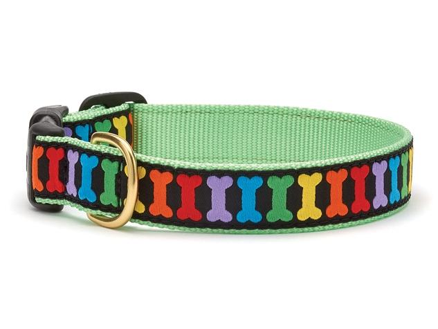 Collars - Rainbones Dog Collar