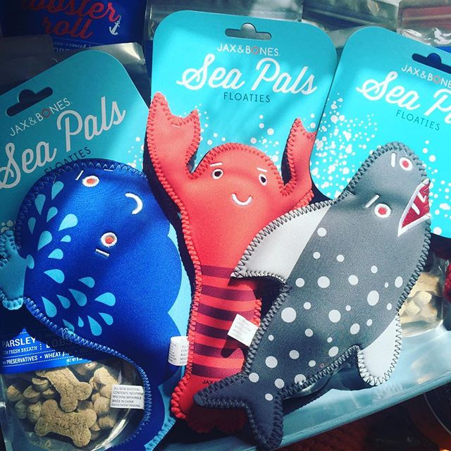Toys, Toys and More Pet Toys! - Sea Pals Floaties Dog Toys