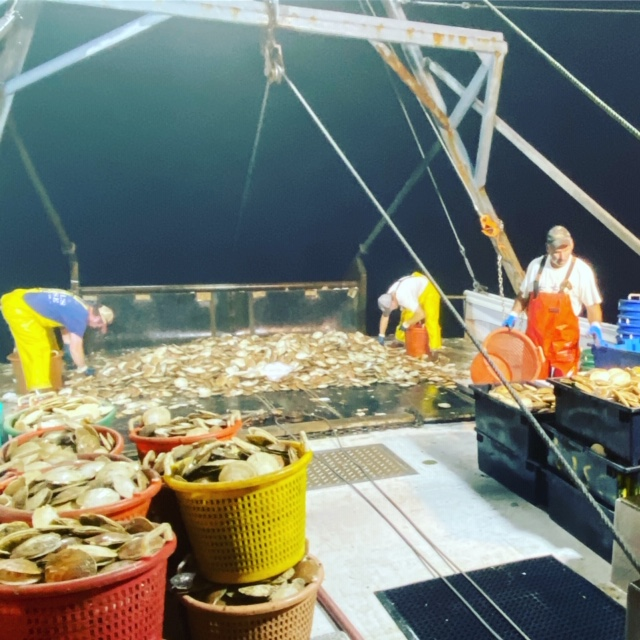 Midnight Our Seafood - Midnight Our Seafood