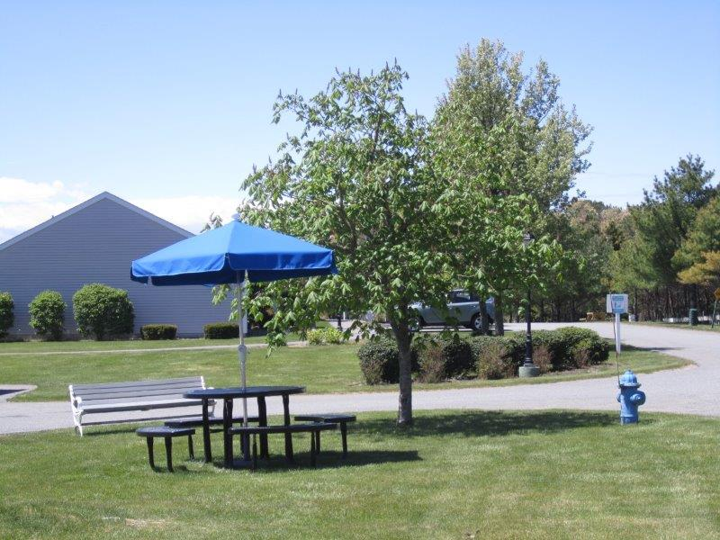 Pine Oaks Grounds